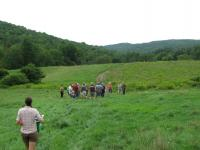 Pasture walk at Franklin Farm in southern Vermont