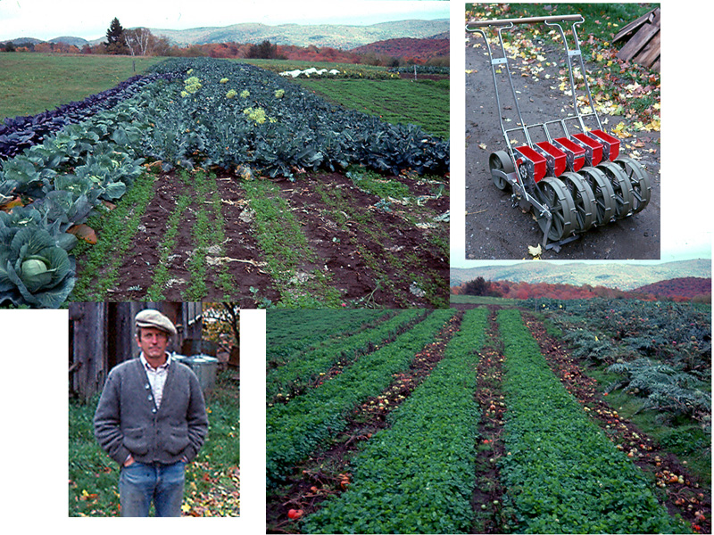 Elliott Coleman's cover cropping system