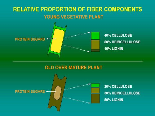 Figure 1. Relative fiber components of young and old plants.