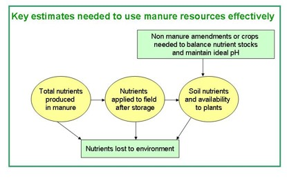 Nutrient flow from manure resources to storage facilities and then to field. Nutrients can be lost from all locations but only those arriving on the field have the chance to feed plants.
