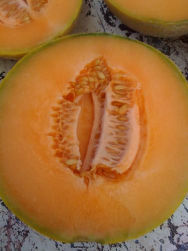 Delicious PMR Melon