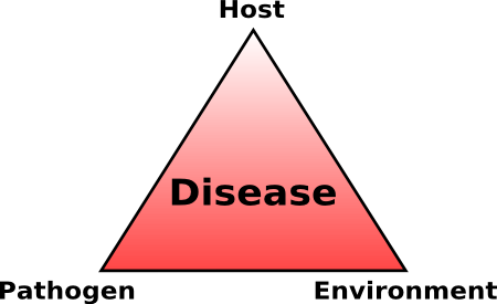 illustration of the disease triangle