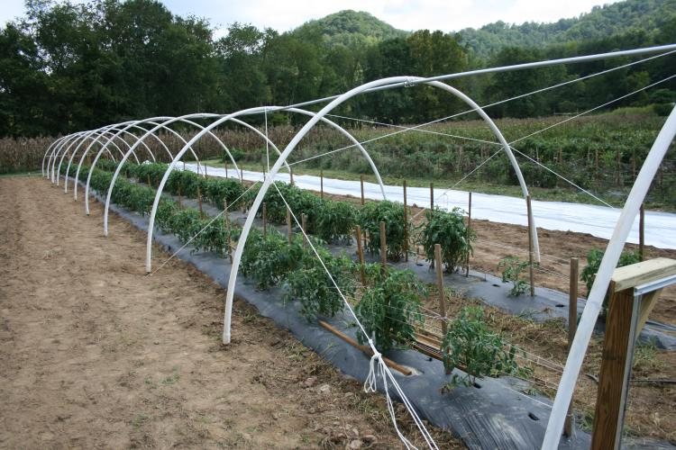 Introduction to High Tunnels - eXtension